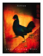 Follow Your Clucking Bliss - Art Print